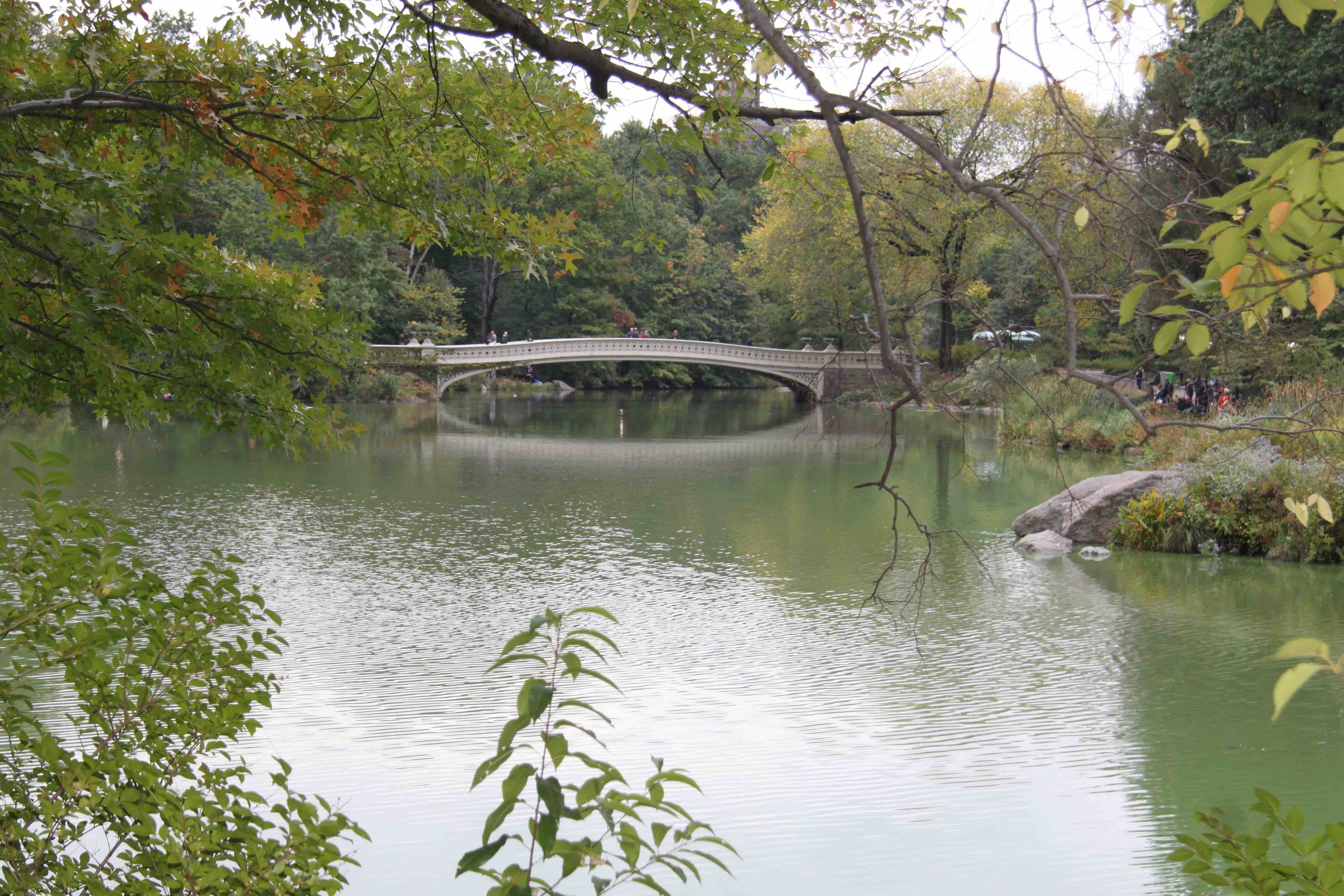 visiter new york Central Park
