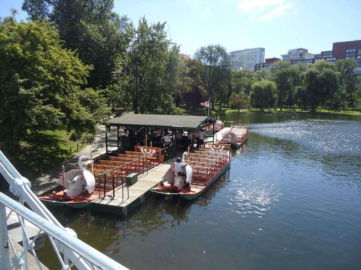 boston swan boats public garden