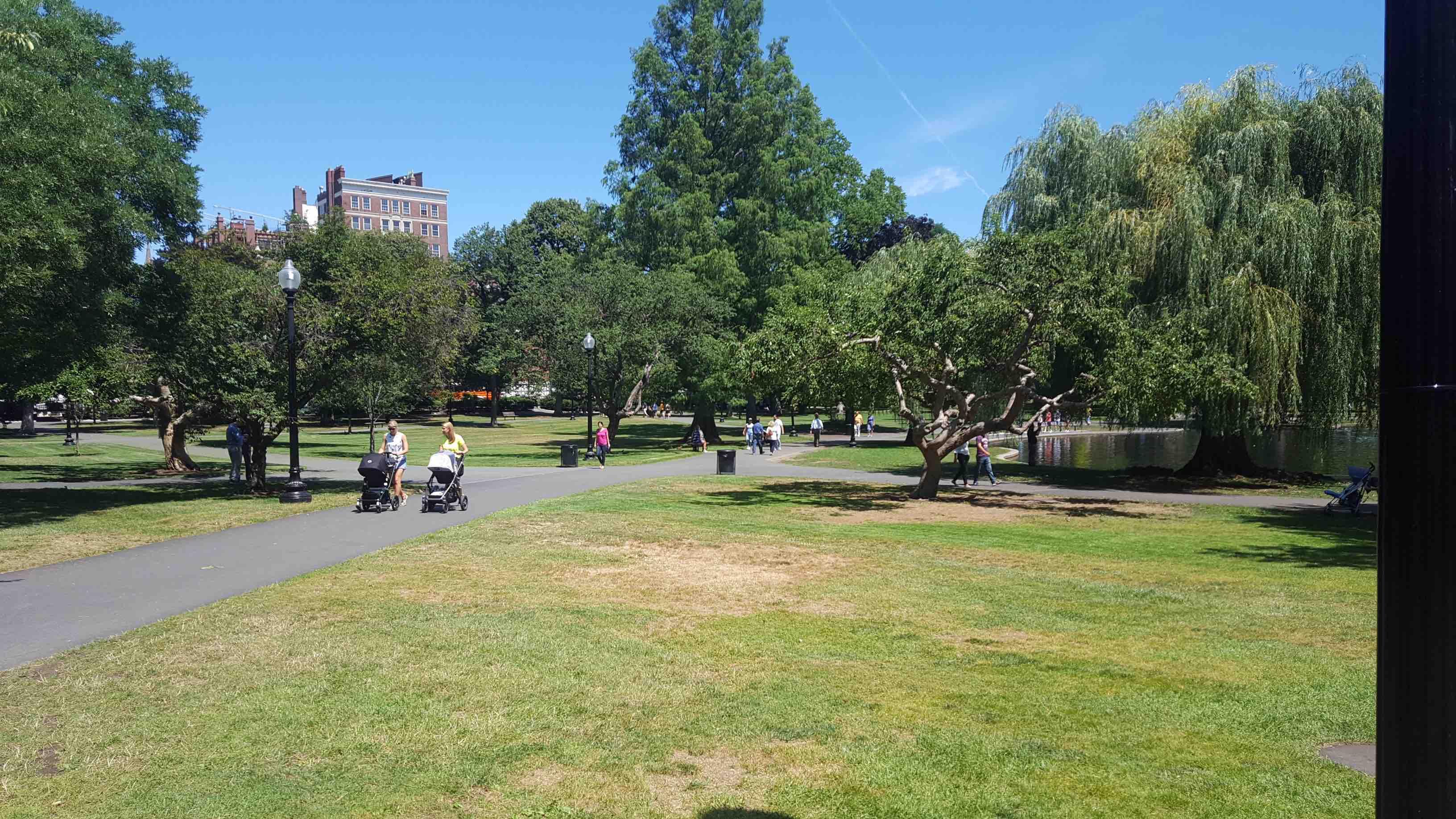 public garden parc