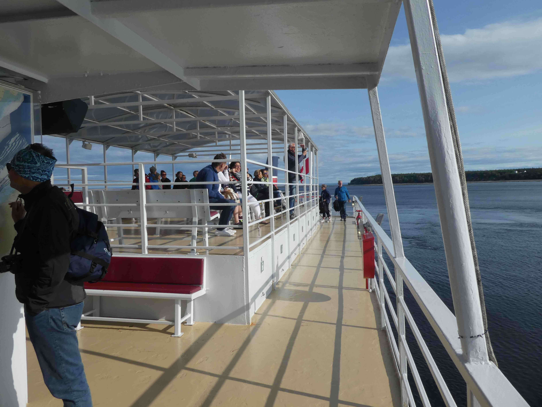 observer baleines Tadoussac